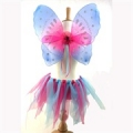 Fairy Wing & Tutu Set