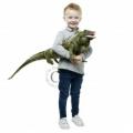 Iguana - Large Creatures