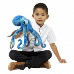 Octopus - Large Creatures