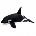 Orca Whale - Large Creatures